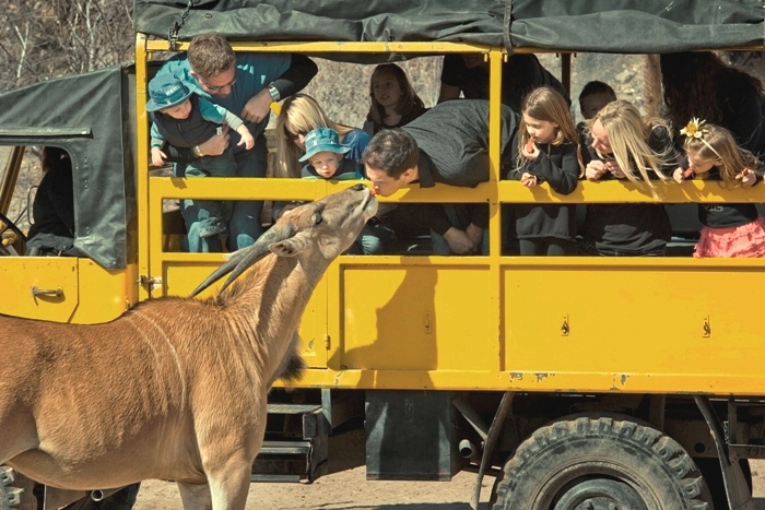 Out of africa wildlife park 2 for 1 coupons 2018