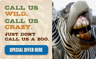 Out of africa discount coupons