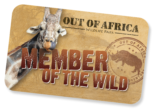 Out Of Africa Wildlife Park Memberships